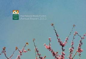 RTBG Annual Report 2013
